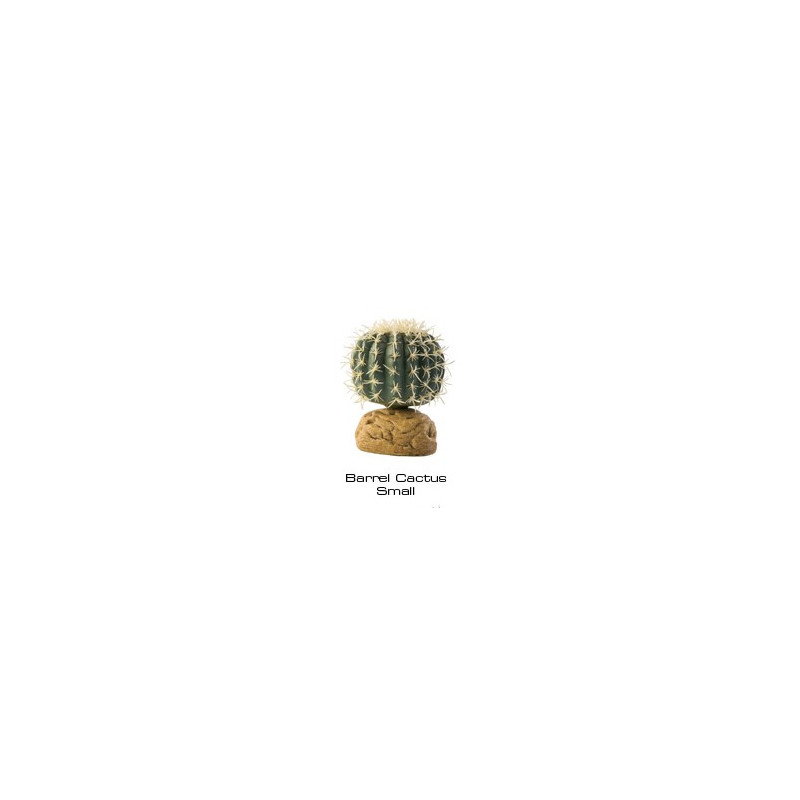 Barrlen Cactus small