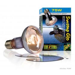 Swamp lamp 75W