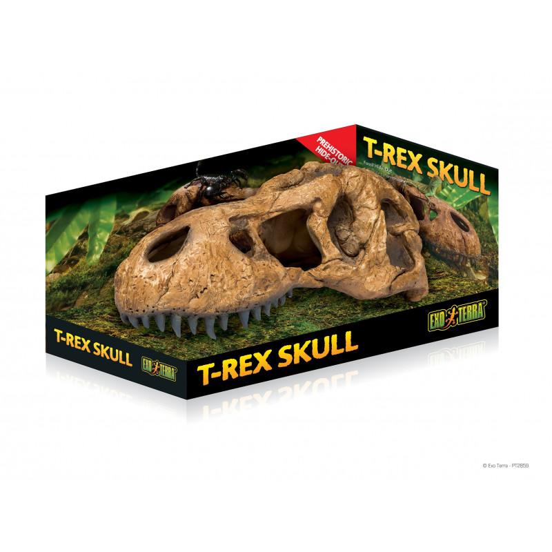 T-Rex Skalle