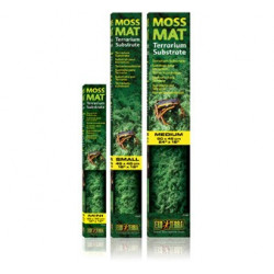 Moss mat mini 30x30 cm