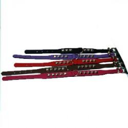 Halsband med nitar 24 cm